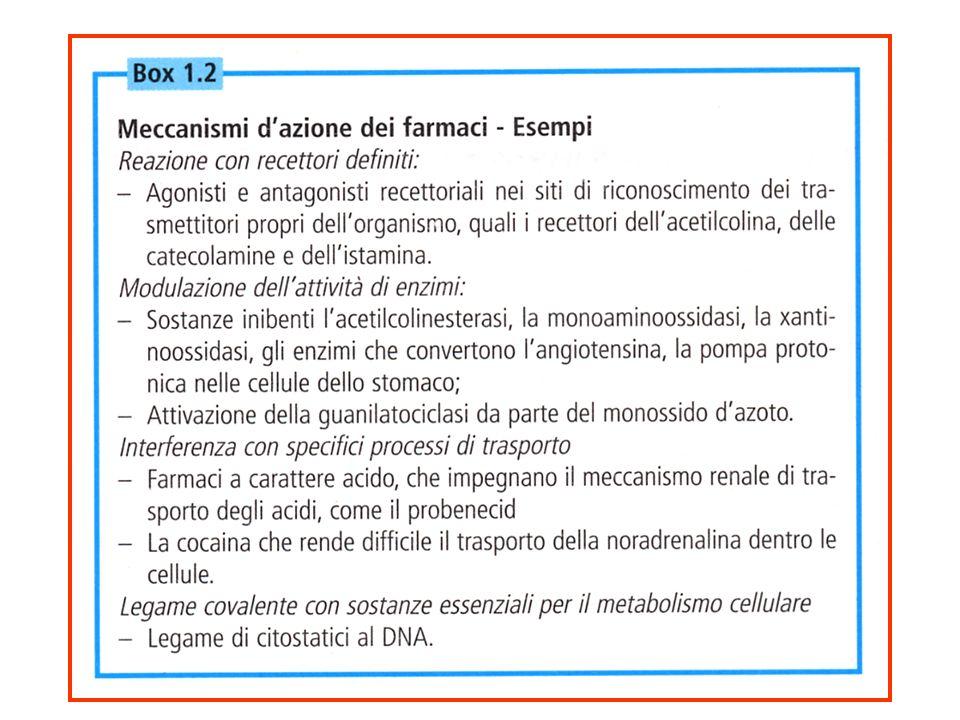 RECETTORI ACCOPPIATI ALLE PROTEINE G Recettore colinergico muscarinico Aumento della permeabilità al K + Farmacologia per immagini Atlante tascabile II Edizione Italiana Lullmann Mohr