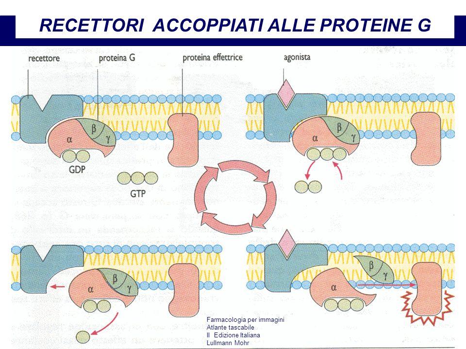 Farmacologia per immagini Atlante tascabile II Edizione Italiana Lullmann Mohr