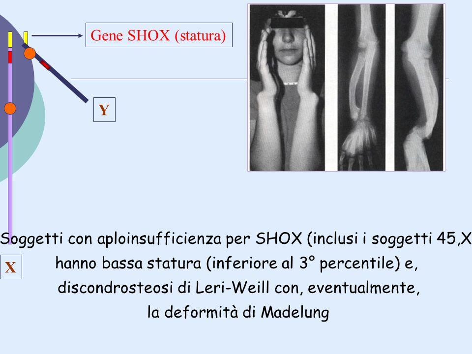 Y X Gene SHOX (statura) Soggetti con aploinsufficienza per SHOX (inclusi i soggetti 45,X) hanno bassa statura (inferiore al 3° percentile) e, discondr