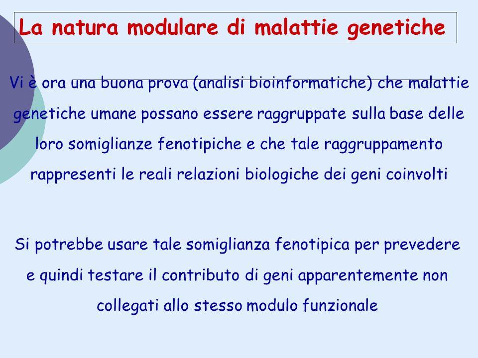 La natura modulare di malattie genetiche Vi è ora una buona prova (analisi bioinformatiche) che malattie genetiche umane possano essere raggruppate su