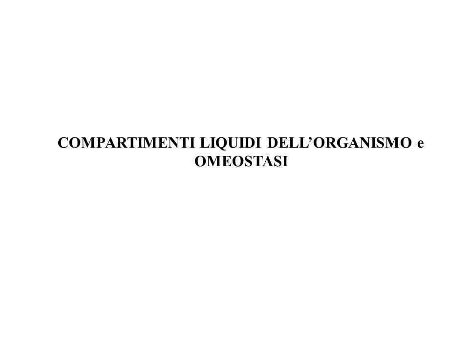 COMPARTIMENTI LIQUIDI DELLORGANISMO e OMEOSTASI
