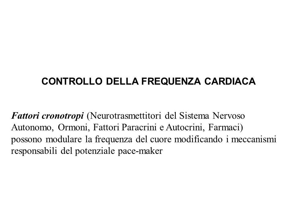 CONTROLLO DELLA FREQUENZA CARDIACA Fattori cronotropi (Neurotrasmettitori del Sistema Nervoso Autonomo, Ormoni, Fattori Paracrini e Autocrini, Farmaci