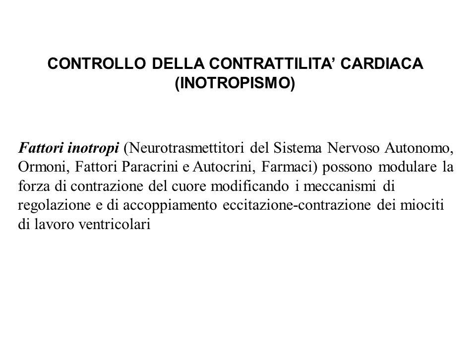 CONTROLLO DELLA CONTRATTILITA CARDIACA (INOTROPISMO) Fattori inotropi (Neurotrasmettitori del Sistema Nervoso Autonomo, Ormoni, Fattori Paracrini e Au