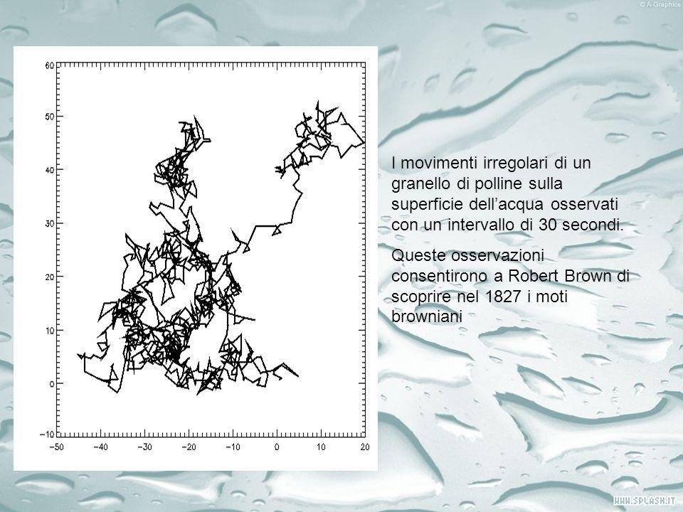 I movimenti irregolari di un granello di polline sulla superficie dellacqua osservati con un intervallo di 30 secondi. Queste osservazioni consentiron