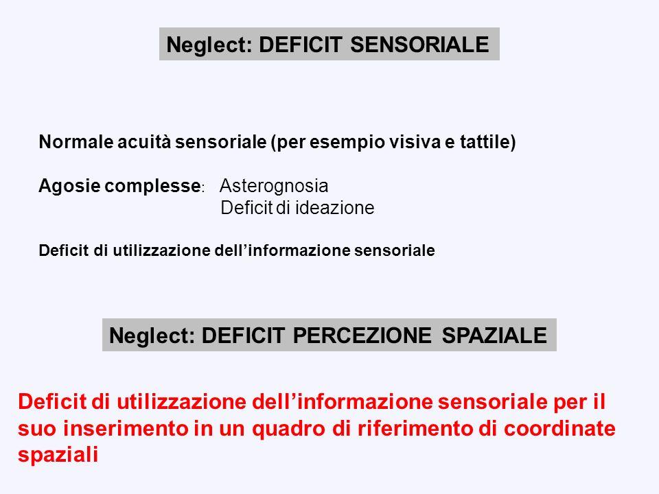 Neglect: DEFICIT SENSORIALE Normale acuità sensoriale (per esempio visiva e tattile) Agosie complesse : Asterognosia Deficit di ideazione Deficit di u