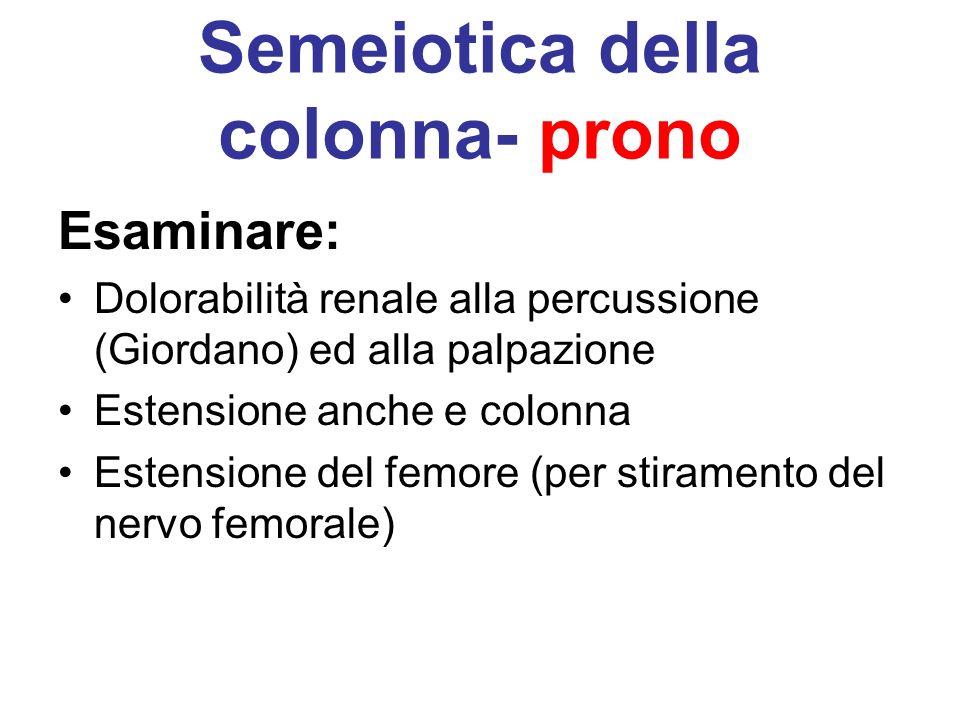 Semeiotica della colonna- prono Esaminare: Dolorabilità renale alla percussione (Giordano) ed alla palpazione Estensione anche e colonna Estensione de