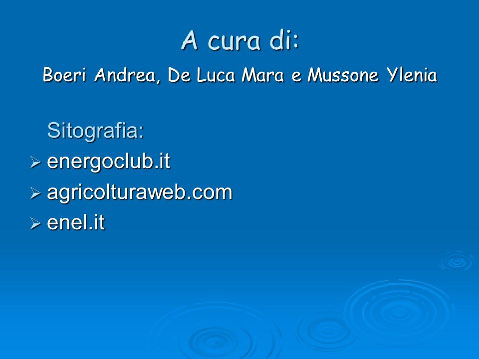 A cura di: Boeri Andrea, De Luca Mara e Mussone Ylenia Sitografia: energoclub.it agricolturaweb.com enel.it