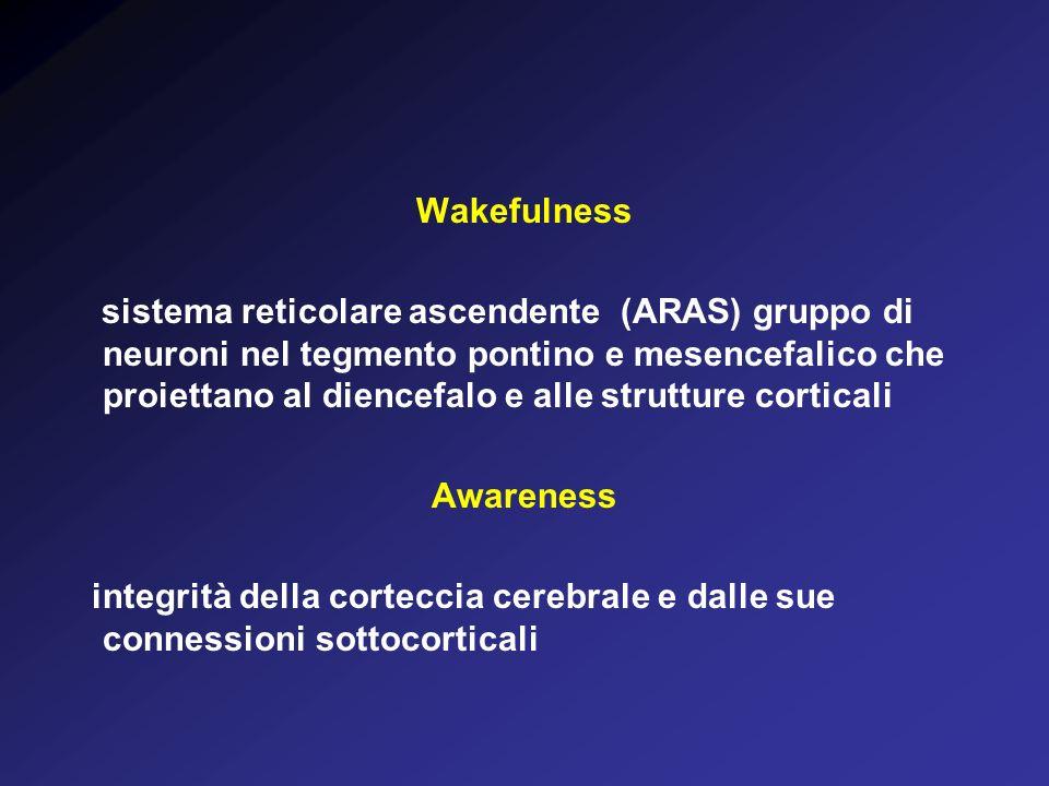 Wakefulness sistema reticolare ascendente (ARAS) gruppo di neuroni nel tegmento pontino e mesencefalico che proiettano al diencefalo e alle strutture corticali Awareness integrità della corteccia cerebrale e dalle sue connessioni sottocorticali