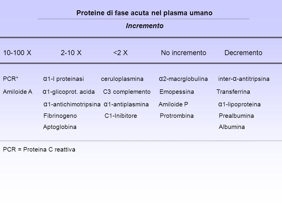 Proteine di fase acuta nel plasma umano Incremento 10-100 X 2-10 X <2 X No incremento Decremento PCR* α 1-I proteinasi ceruloplasmina α 2-macrglobulin