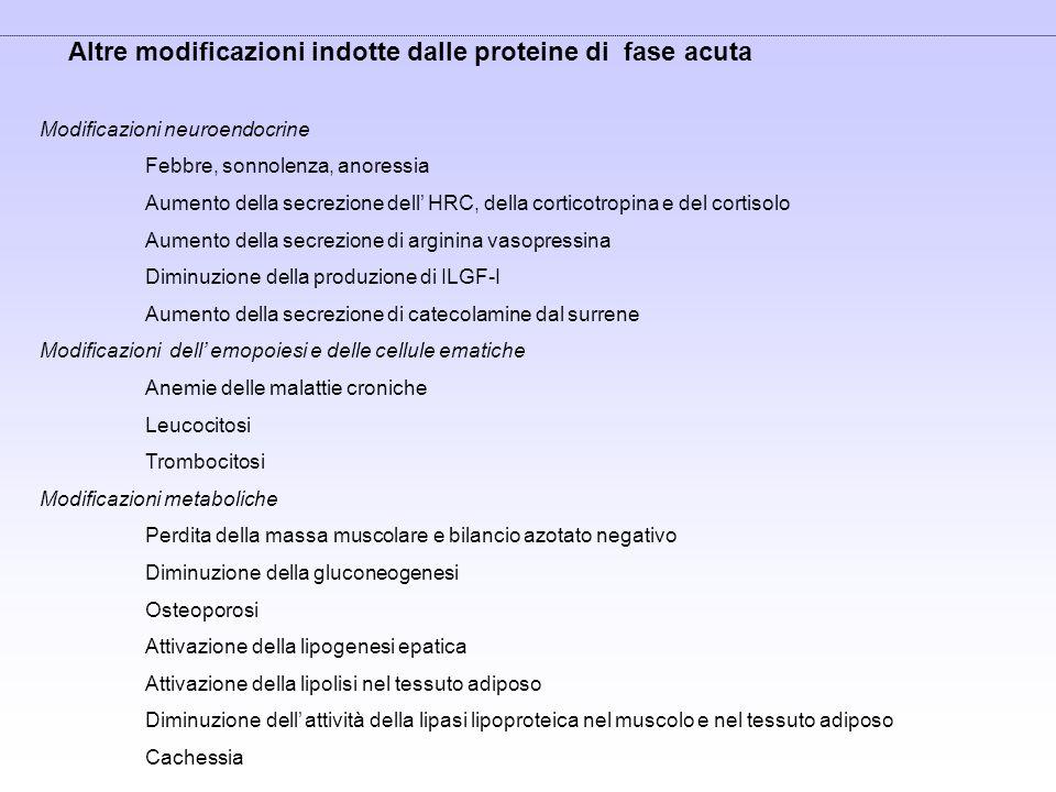 Altre modificazioni indotte dalle proteine di fase acuta Modificazioni neuroendocrine Febbre, sonnolenza, anoressia Aumento della secrezione dell HRC,