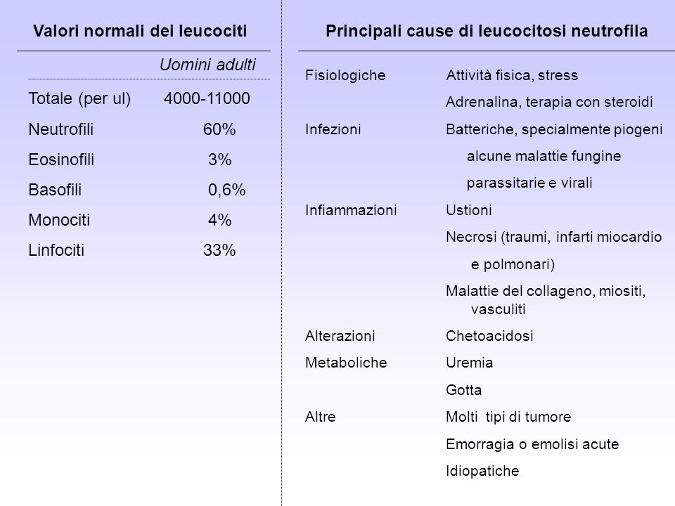 Cause di neutropenia Anomalie del compartimento midollare Danni al midollo osseo Difetti della maturazione * Agenti citotossici e non citotossici * Acquisiti * Radiazioni carenza di acido folico e di vitamina B12 * Sostanze chimiche * Patologie maligne e selezione clonale benzene, DDT, dinitrofenolo, arsenico, bismuto neutropenie congenite ossido nitrico sindromi mielodisplastiche * Neutropenie congenite ed ereditarie emoglobinuria parossistica notturna * Neutropenie immuno-mediate (patologie reumatiche) citotossicità mediata da cellule T citossicità anticorpo mediata (cellule T e anticorpi) * Infezioni virali (v.