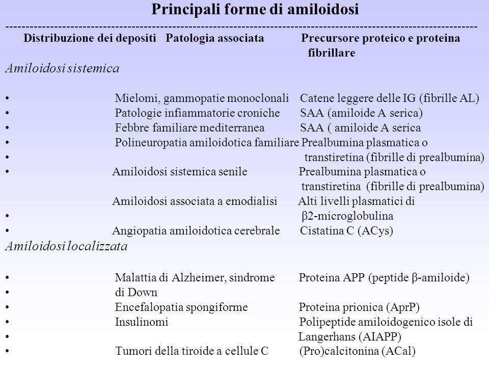 Principali forme di amiloidosi -------------------------------------------------------------------------------------------------------------------- Di