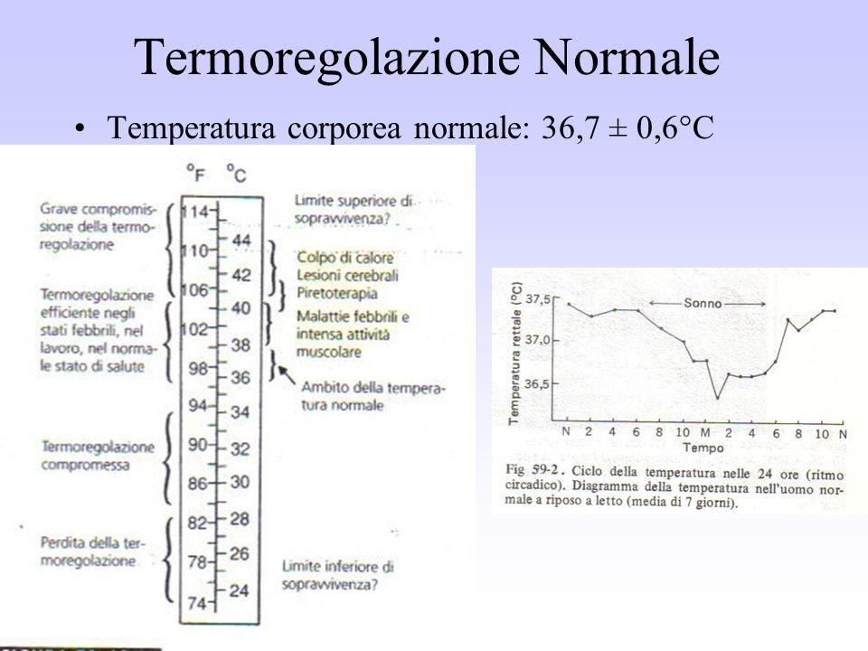 Termoregolazione Normale Temperatura corporea normale: 36,7 ± 0,6°C