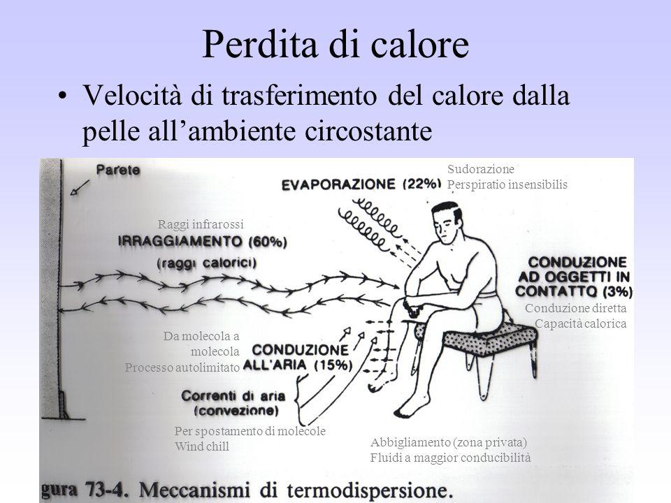 Perdita di calore Velocità di trasferimento del calore dalla pelle allambiente circostante Conduzione diretta Capacità calorica Sudorazione Perspirati