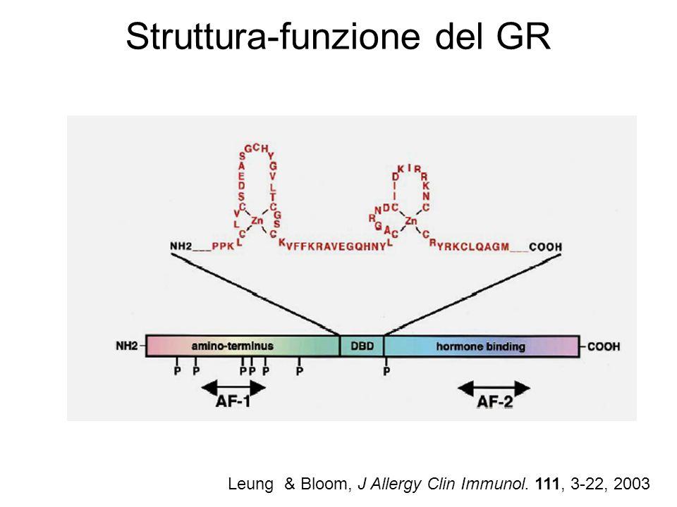 Struttura-funzione del GR Leung & Bloom, J Allergy Clin Immunol. 111, 3-22, 2003