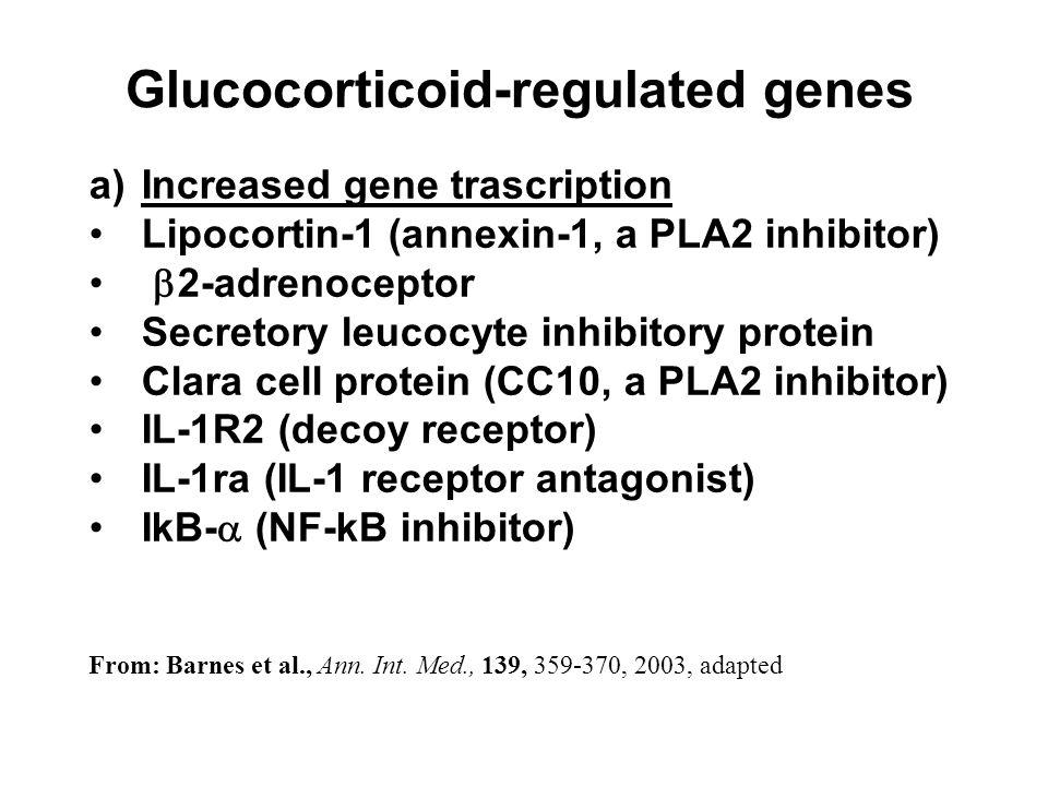 Glucocorticoid-regulated genes a)Increased gene trascription Lipocortin-1 (annexin-1, a PLA2 inhibitor) 2-adrenoceptor Secretory leucocyte inhibitory