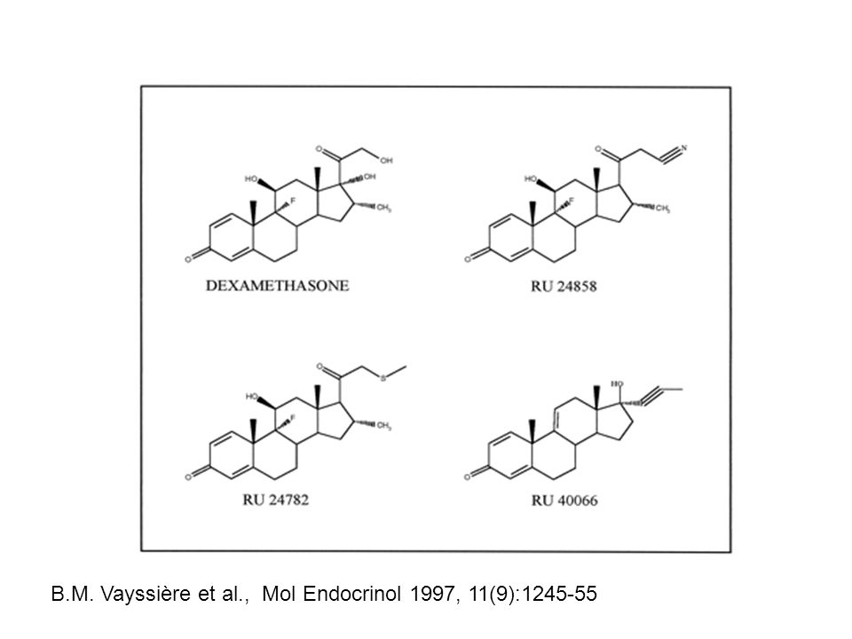B.M. Vayssière et al., Mol Endocrinol 1997, 11(9):1245-55