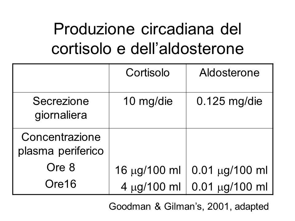 Produzione circadiana del cortisolo e dellaldosterone CortisoloAldosterone Secrezione giornaliera 10 mg/die0.125 mg/die Concentrazione plasma periferi