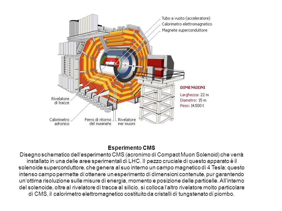 Esperimento CMS Disegno schematico dellesperimento CMS (acronimo di Compact Muon Solenoid) che verrà installato in una delle aree sperimentali di LHC.