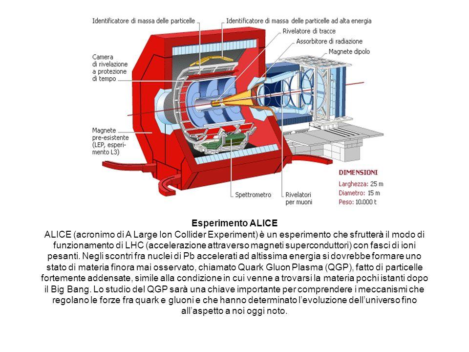 Esperimento ALICE ALICE (acronimo di A Large Ion Collider Experiment) è un esperimento che sfrutterà il modo di funzionamento di LHC (accelerazione at