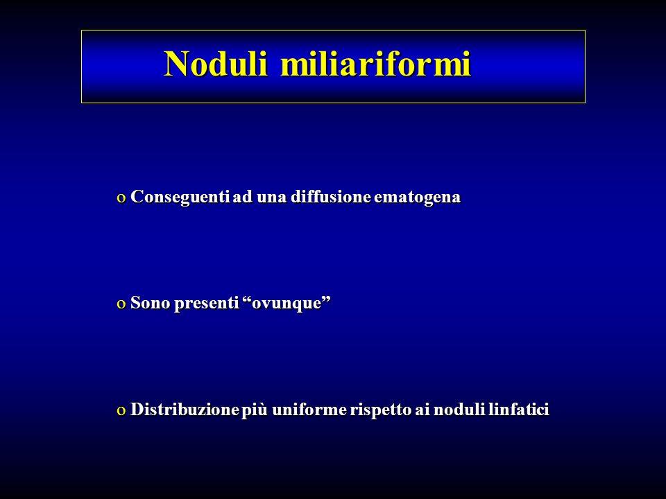 Noduli miliariformi o Conseguenti ad una diffusione ematogena o Sono presenti ovunque o Distribuzione più uniforme rispetto ai noduli linfatici