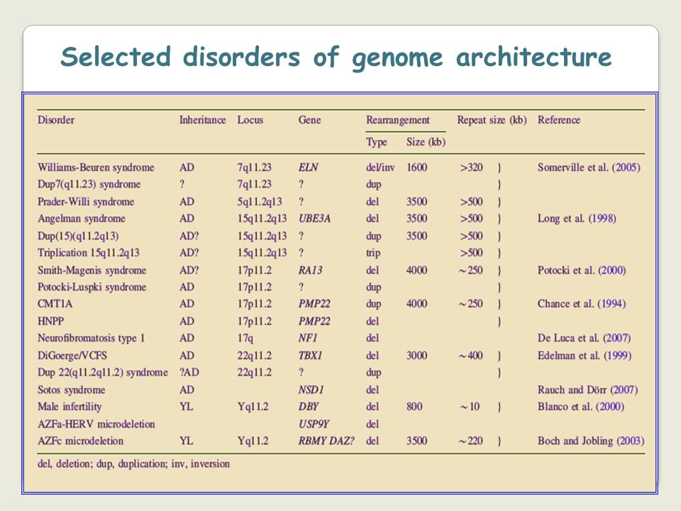 Selected disorders of genome architecture