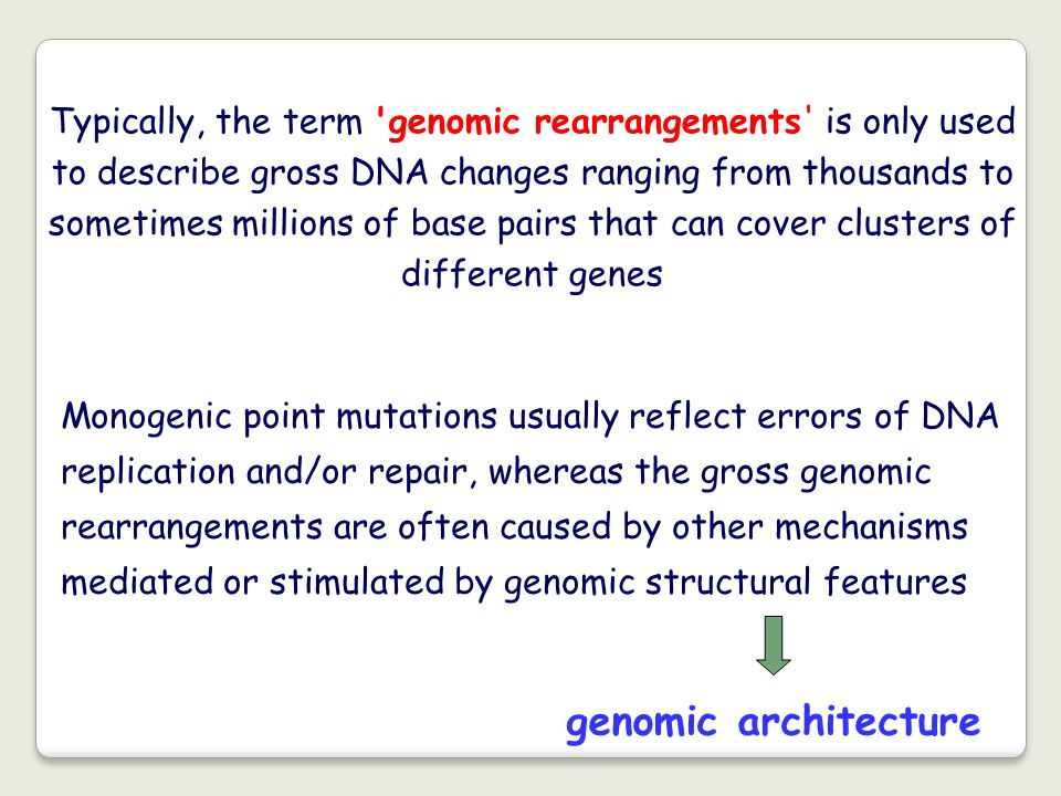 Typically, the term 'genomic rearrangements' is only used to describe gross DNA changes ranging from thousands to sometimes millions of base pairs tha