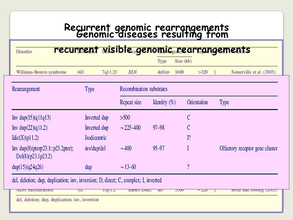 Recurrent genomic rearrangements Genomic diseases resulting from recurrent visible genomic rearrangements