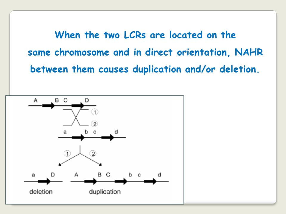 When the two LCRs are located on the same chromosome and in direct orientation, NAHR between them causes duplication and/or deletion.