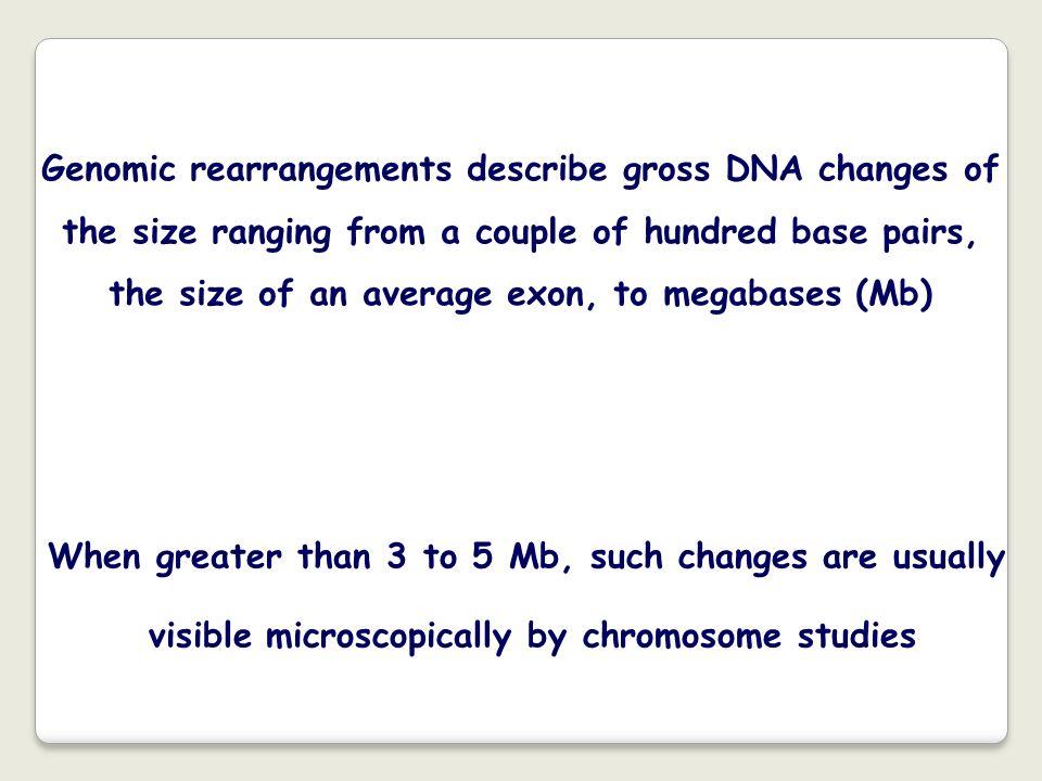 FISH con una sonda del gene SRY in un maschio 46,XX Xder(X)t(Xp22.3;Yp11.3) I maschi XX (circa 1:20.000) hanno un cariotipo femminile apparentemente normale.
