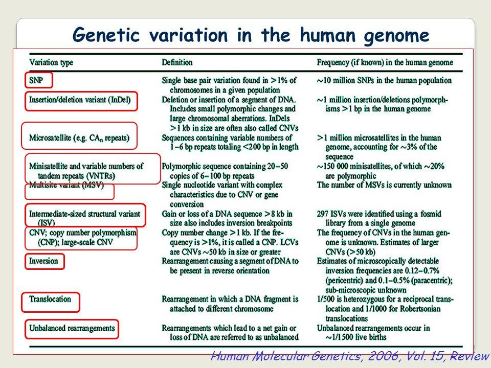 Genetic variation in the human genome Human Molecular Genetics, 2006, Vol. 15, Review