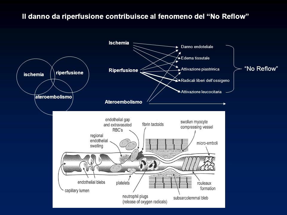 Il danno da riperfusione contribuisce al fenomeno del No Reflow Ischemia Riperfusione Ateroembolismo Danno endoteliale Edema tissutale Attivazione pia