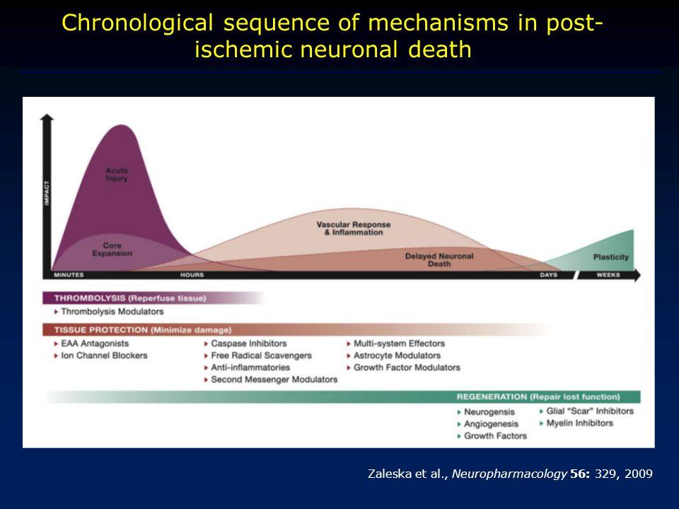 Chronological sequence of mechanisms in post- ischemic neuronal death Zaleska et al., Neuropharmacology 56: 329, 2009