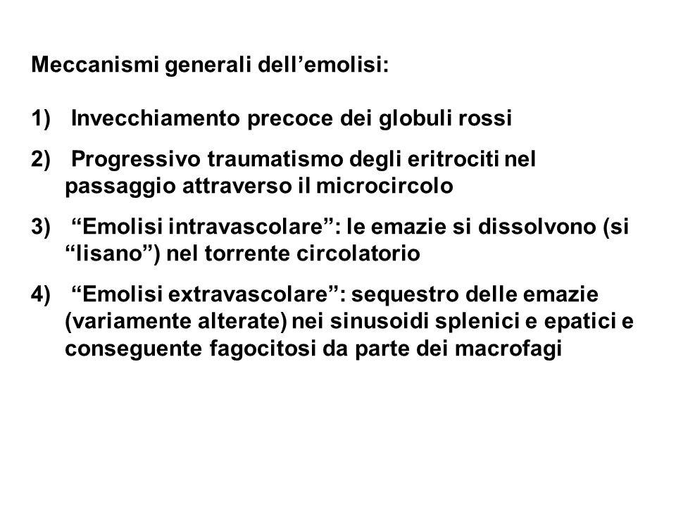 Meccanismi generali dellemolisi: 1) Invecchiamento precoce dei globuli rossi 2) Progressivo traumatismo degli eritrociti nel passaggio attraverso il m