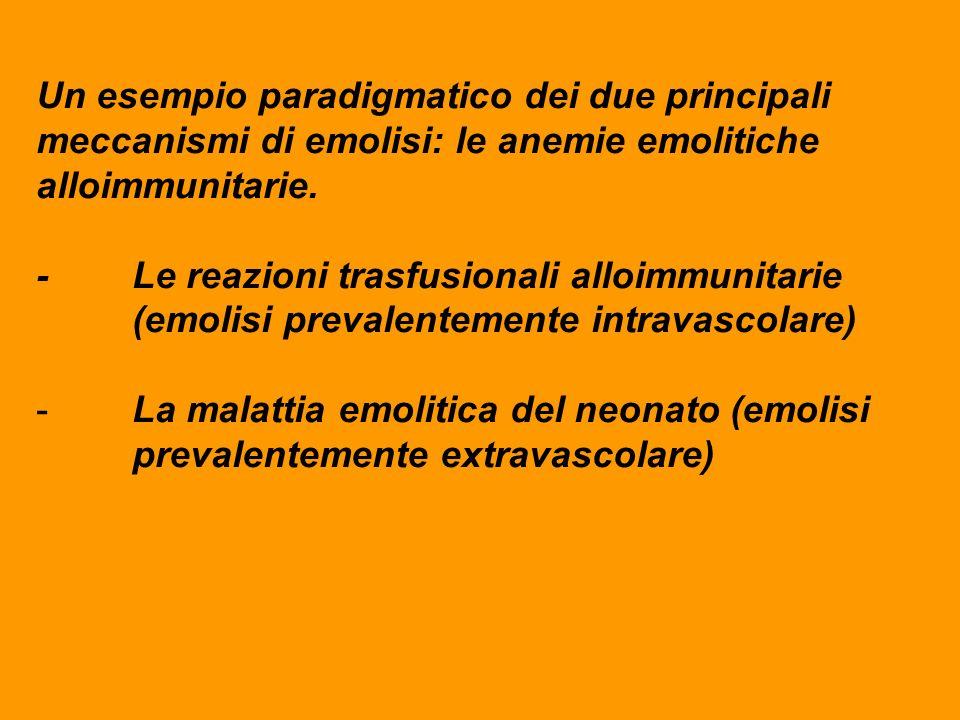 Un esempio paradigmatico dei due principali meccanismi di emolisi: le anemie emolitiche alloimmunitarie. - Le reazioni trasfusionali alloimmunitarie (
