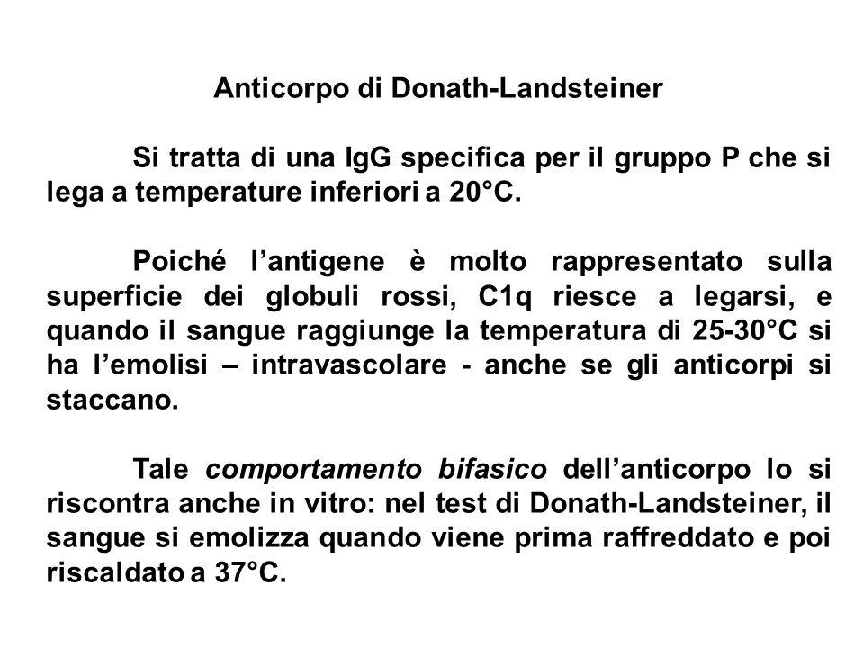 Anticorpo di Donath-Landsteiner Si tratta di una IgG specifica per il gruppo P che si lega a temperature inferiori a 20°C. Poiché lantigene è molto ra