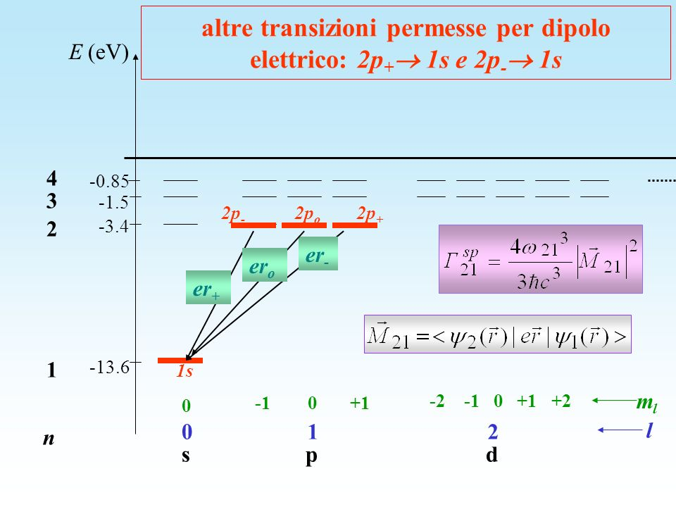 E (eV) -13.6 -1.5 -3.4 -0.85 n 1 2 3 4 l mlml 0 s 1 p 2 d 0 -1 0 +1 -2 -1 0 +1 +2 altre transizioni permesse per dipolo elettrico: 2p + 1s e 2p - 1s 2