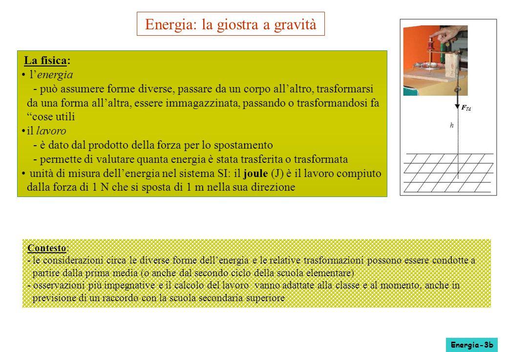 Energia: la giostra a gravità La fisica: lenergia - può assumere forme diverse, passare da un corpo allaltro, trasformarsi da una forma allaltra, esse
