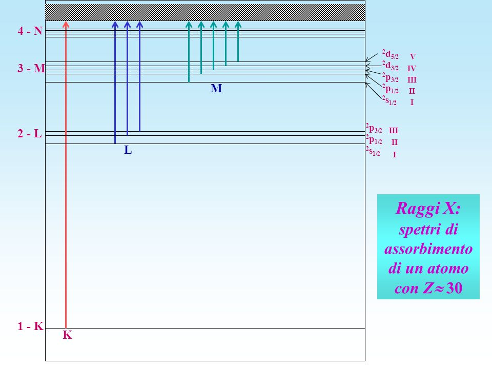 Raggi X: spettri di assorbimento di un atomo con Z 30 1 - K 2 - L 3 - M 2 p 3/2 2 p 1/2 2 s 1/2 K L 2 d 5/2 2 d 3/2 2 p 3/2 2 p 1/2 2 s 1/2 III II I V