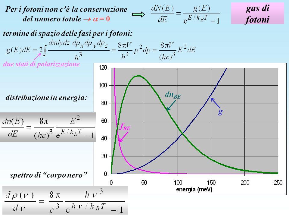 gas di fotoni Per i fotoni non cè la conservazione del numero totale = 0 due stati di polarizzazione distribuzione in energia: termine di spazio delle