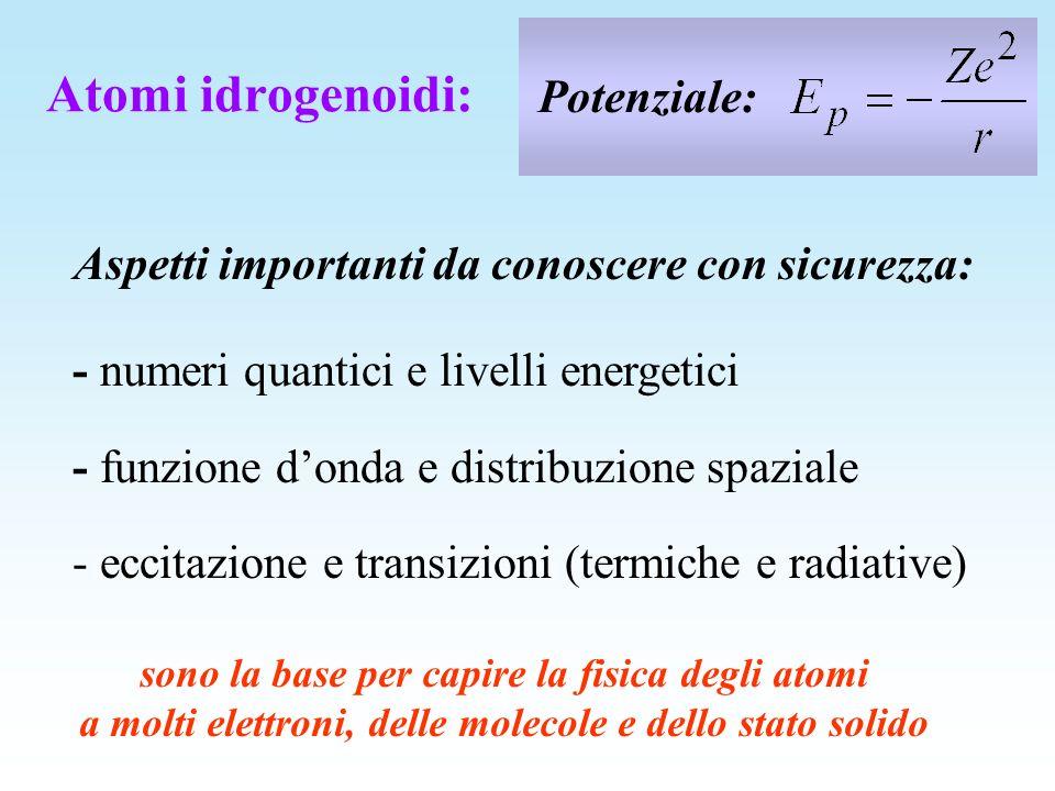 Potenziale: Aspetti importanti da conoscere con sicurezza: - numeri quantici e livelli energetici - funzione donda e distribuzione spaziale - eccitazi