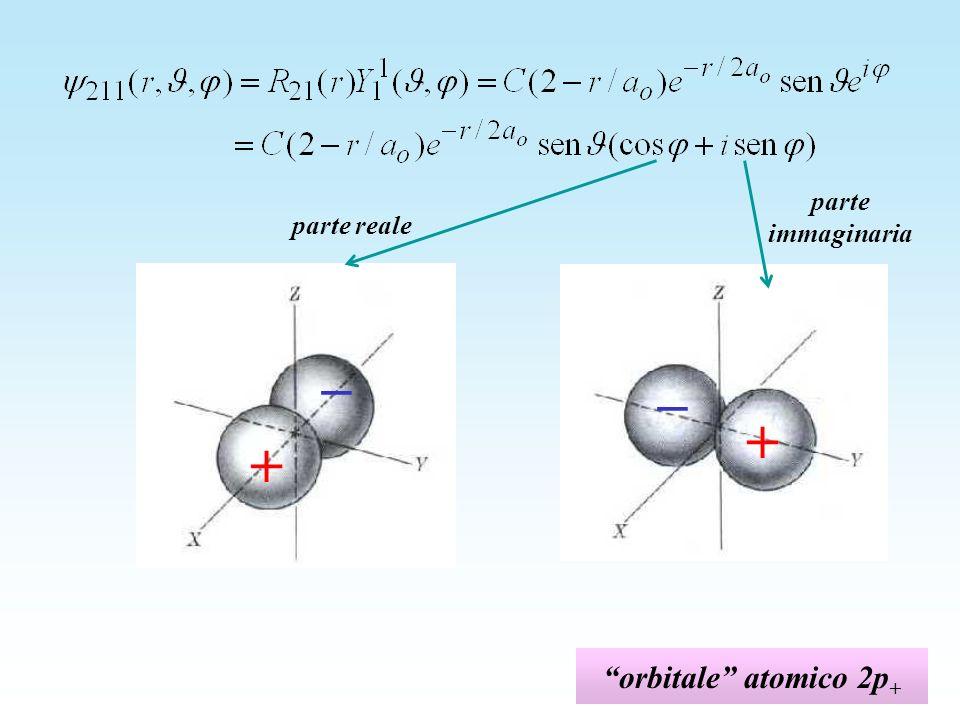 orbitale atomico 2p + parte reale parte immaginaria + _ + _