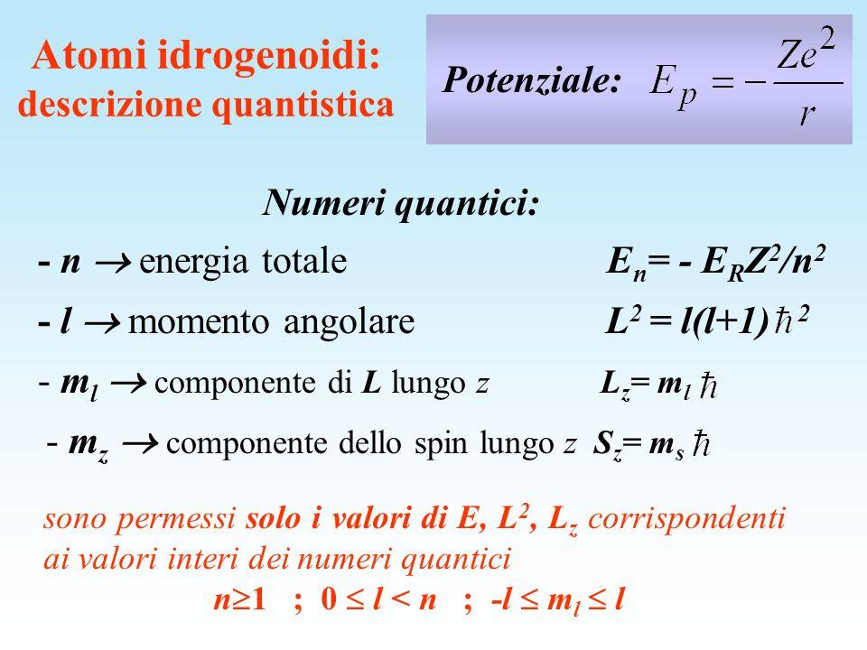 E (eV) -13.6 -1.5 -3.4 -0.85 n 1 2 3 4 l mlml 0 s 1 p 2 d 0 -1 0 +1 -2 -1 0 +1 +2 rappresentazione n,l,m l,m s > (2) (6)(2) (6)(2)(10) (6)(2)(10) Livelli energetici: diagramma di Grotrian