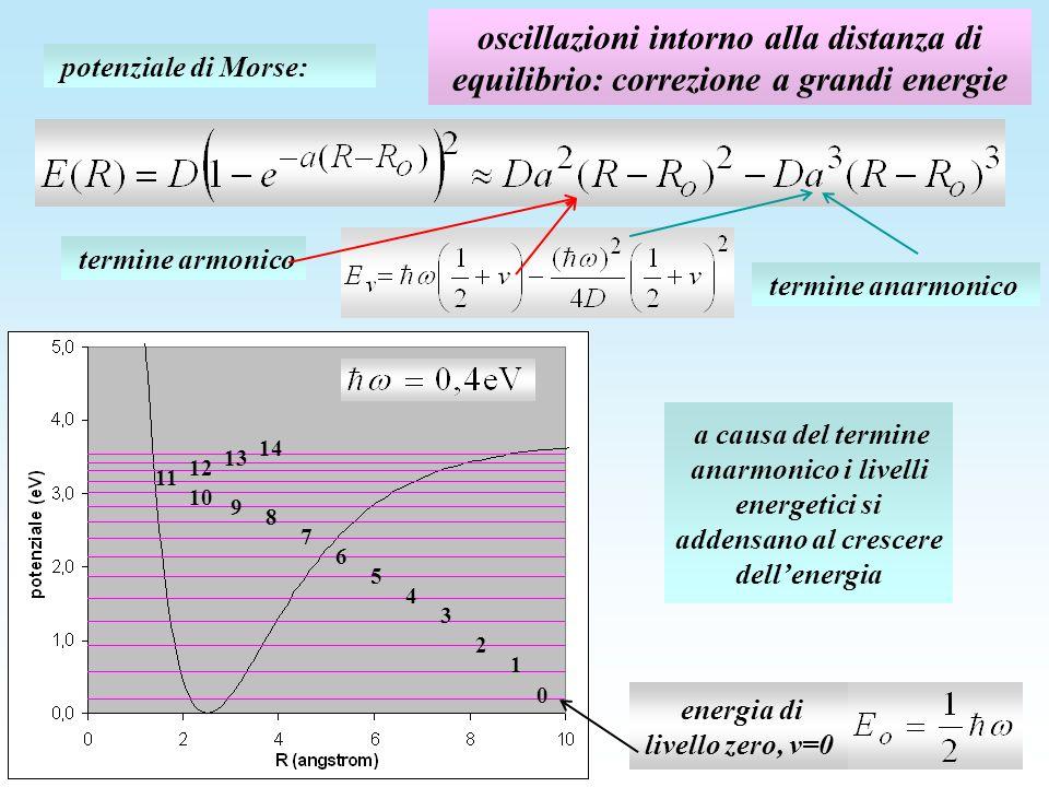 oscillazioni intorno alla distanza di equilibrio: correzione a grandi energie potenziale di Morse: termine armonico termine anarmonico energia di livello zero, v=0 1 0 2 3 4 5 6 7 13 9 8 10 12 11 14 a causa del termine anarmonico i livelli energetici si addensano al crescere dellenergia