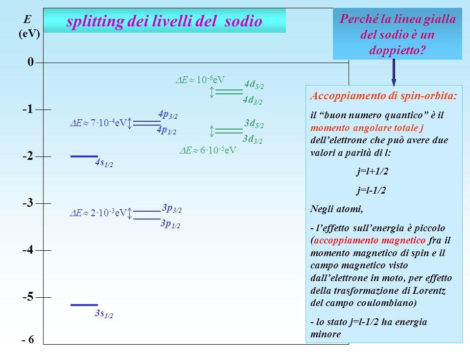 splitting dei livelli del sodio E (eV) 0 -2 -3 -4 -5 - 6 Perché la linea gialla del sodio è un doppietto? Accoppiamento di spin-orbita: il buon numero