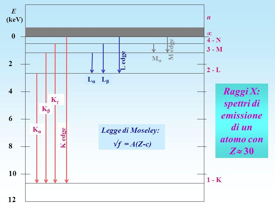 Raggi X: spettri di emissione di un atomo con Z 30 E (keV) 0 2 4 6 8 10 12 n 1 - K 2 - L 3 - M 4 - N K K K K edge L L L edge M M edge Legge di Moseley