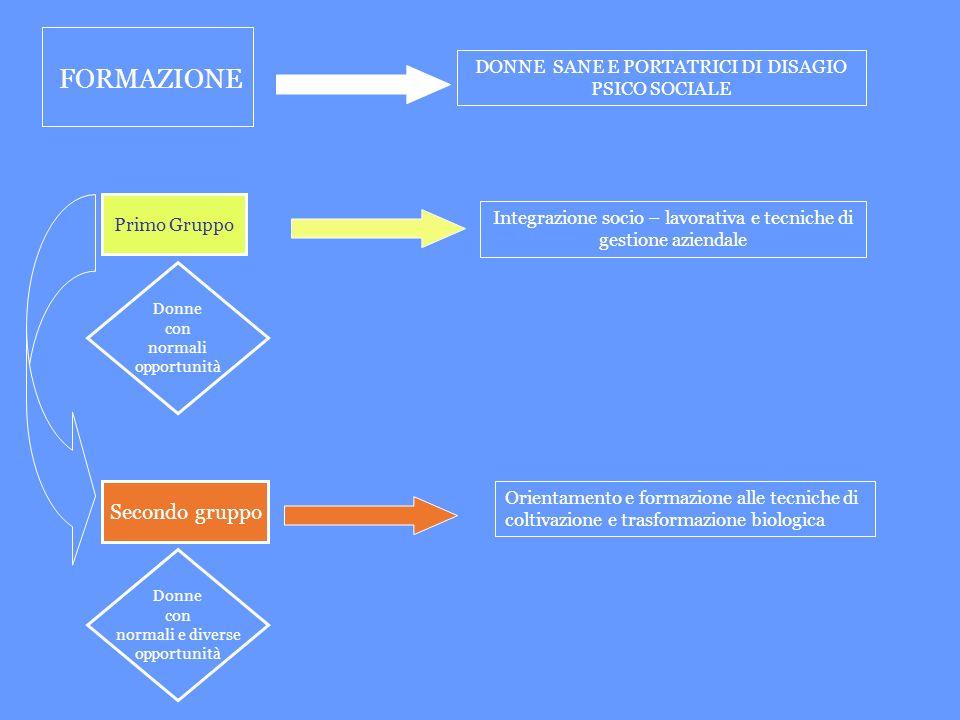 FORMAZIONE DONNE SANE E PORTATRICI DI DISAGIO PSICO SOCIALE Primo Gruppo Integrazione socio – lavorativa e tecniche di gestione aziendale Donne con no