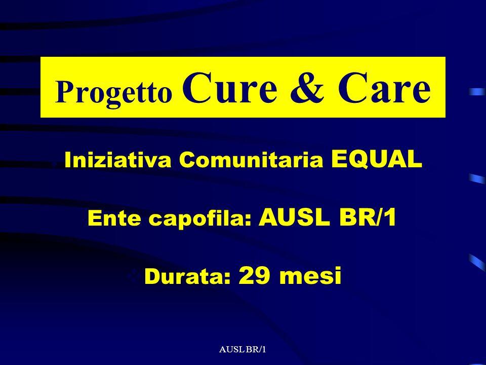 AUSL BR/1 Capacità di erogare risposte tra loro integrate Collaborazione tra pubblico e privato sociale Elaborazione di servizi ad elevata integrazione socio-sanitaria per –ottimizzare le risorse –Rispondere adeguatamente alla complessità dei bisogni –coordinare gli interventi con quali modalità Progetto Cure & Care Ente capofila: AUSL BR/1