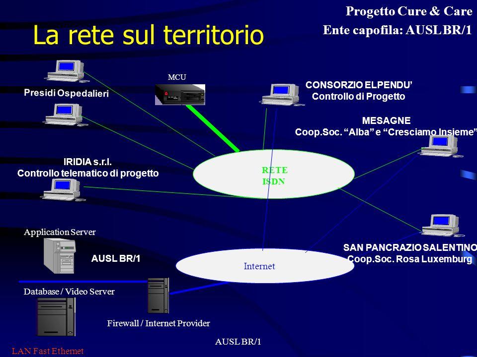 AUSL BR/1 Organizzazione Comitato di Gestione Comitato Scientifico Centrale di Coordinamento Operativo e Telematico Gruppo di Ricerca Sociale Gruppo d