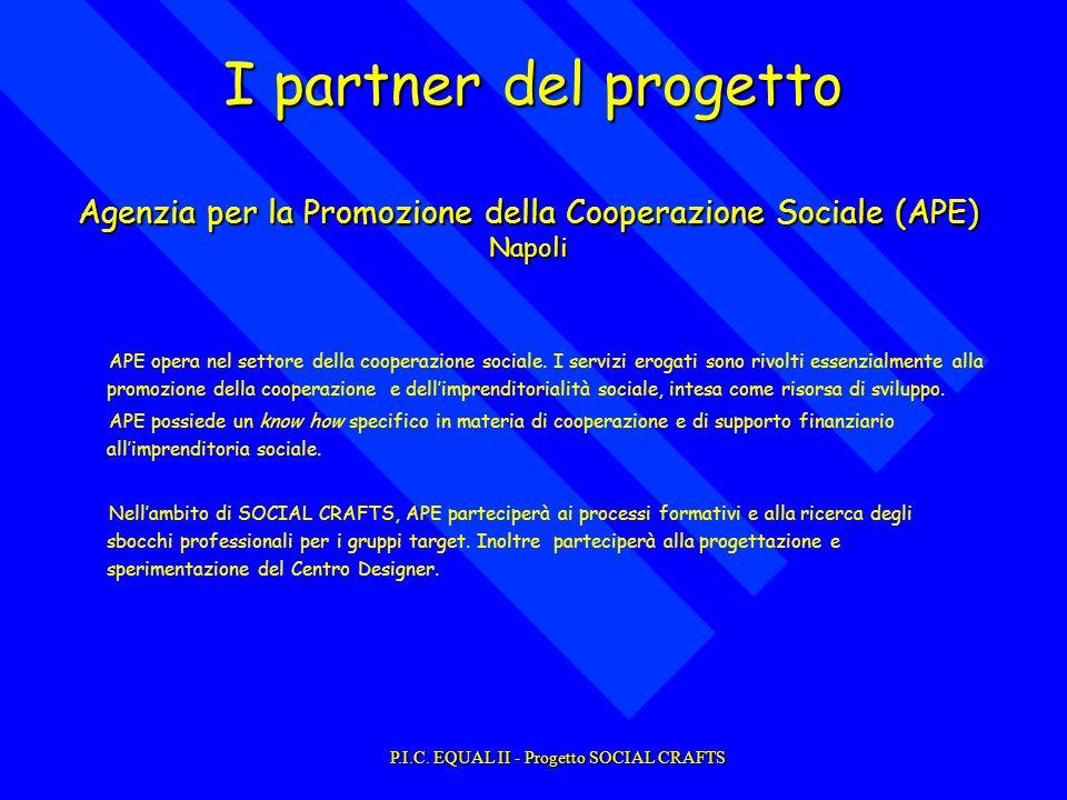APE opera nel settore della cooperazione sociale.